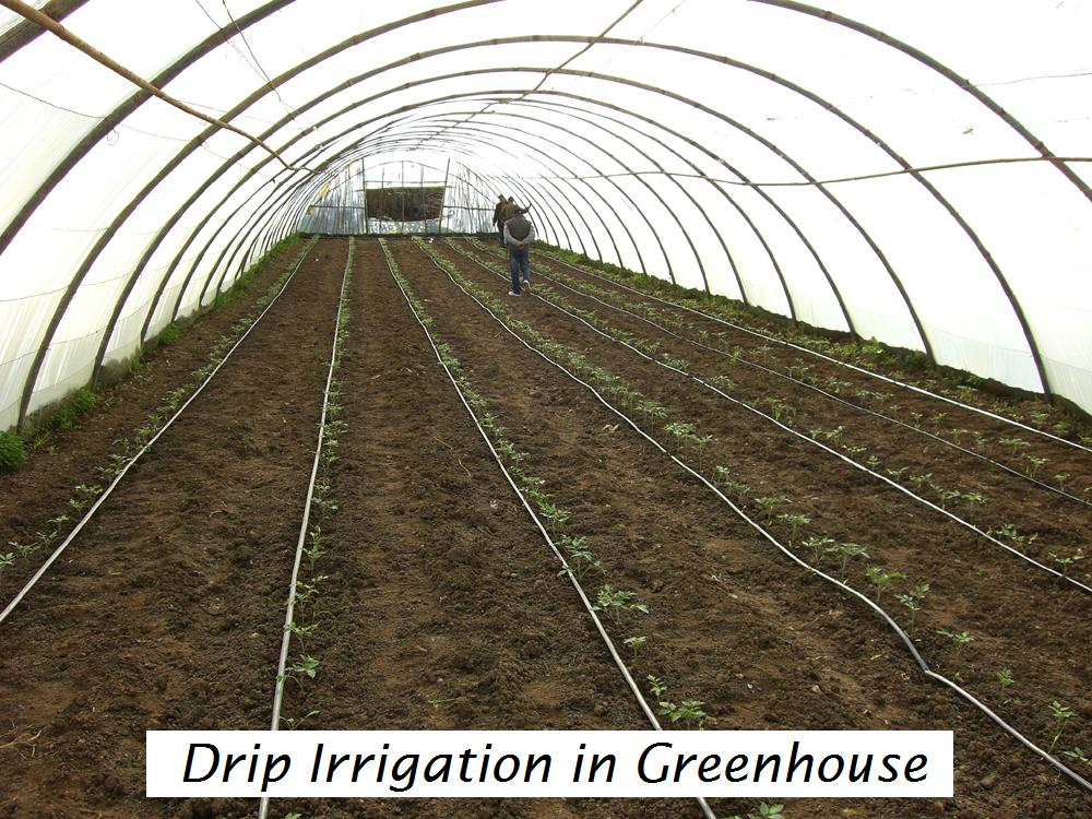 Gator 2000 Drip Irrigation Kit Drip Irrigation Parts And